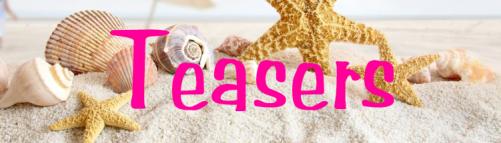 teasers beach banner