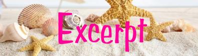 excerpt beach banner